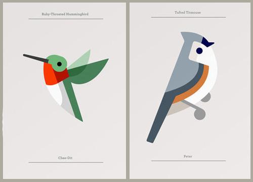 bird_fieldguide_modern