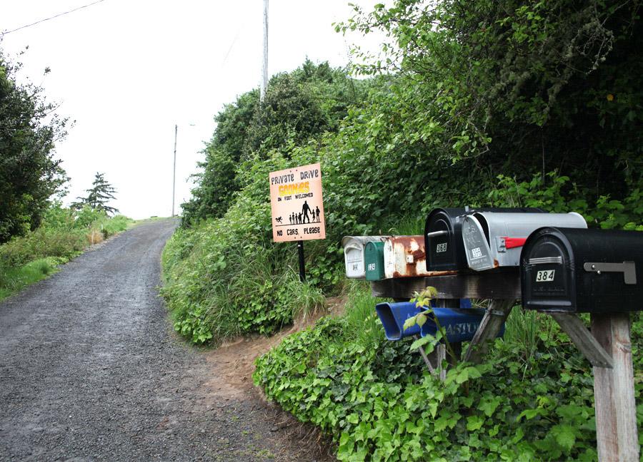 gonnie_house_driveway