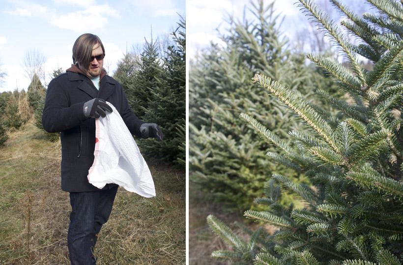 christmas_tree_2013_4